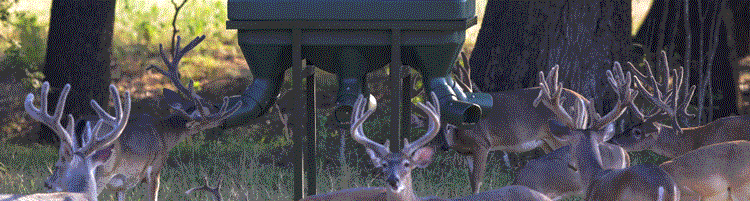 Texas Hunter Products Xtreme Protein Feeders for Deer